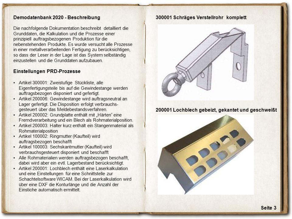 Seite 3 Demodatenbank 2020 - Beschreibung Die nachfolgende Dokumentation beschreibt detailliert die Grunddaten, die Kalkulation und die Prozesse einer
