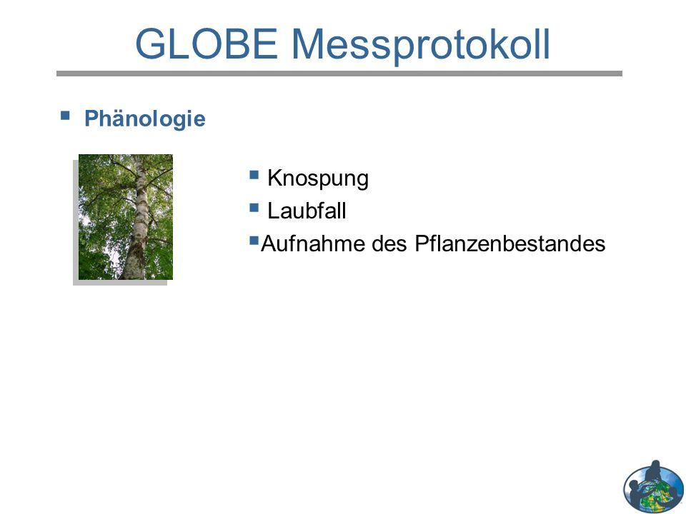 Phänologie GLOBE Messprotokoll  Knospung  Laubfall  Aufnahme des Pflanzenbestandes