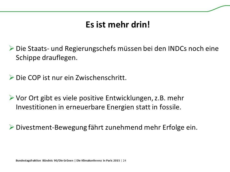 Bundestagsfraktion Bündnis 90/Die Grünen | Die Klimakonferenz in Paris 2015 | 24 Es ist mehr drin!  Die Staats- und Regierungschefs müssen bei den IN