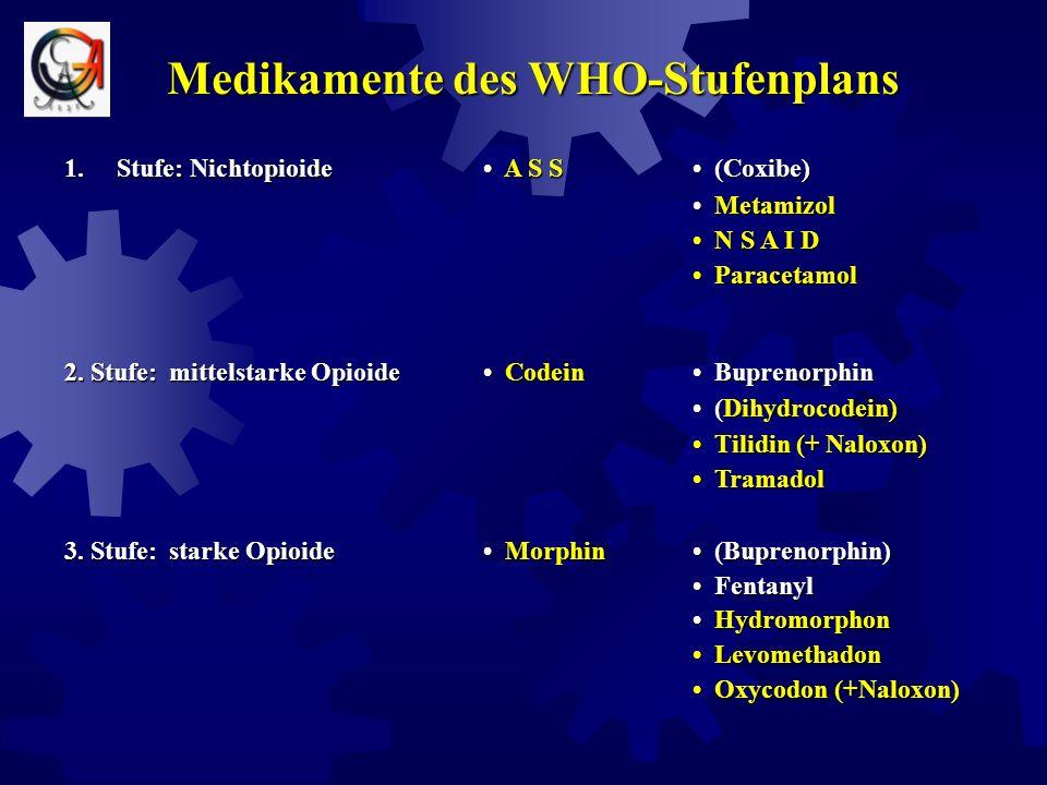 Regeln der medikamentösen Therapie Schriftliche Einnahmeanleitung für Patient und Angehörige Regelmäßige genaue Kontrolle der analgetischen Wirkung An
