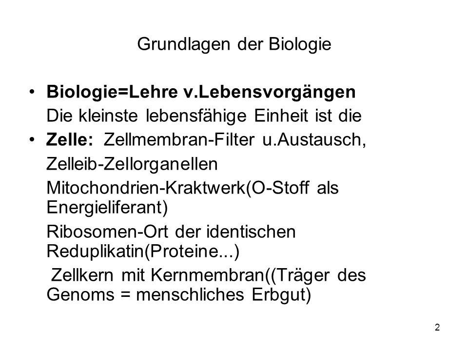 2 Grundlagen der Biologie Biologie=Lehre v.Lebensvorgängen Die kleinste lebensfähige Einheit ist die Zelle: Zellmembran-Filter u.Austausch, Zelleib-Zellorganellen Mitochondrien-Kraktwerk(O-Stoff als Energieliferant) Ribosomen-Ort der identischen Reduplikatin(Proteine...) Zellkern mit Kernmembran((Träger des Genoms = menschliches Erbgut)