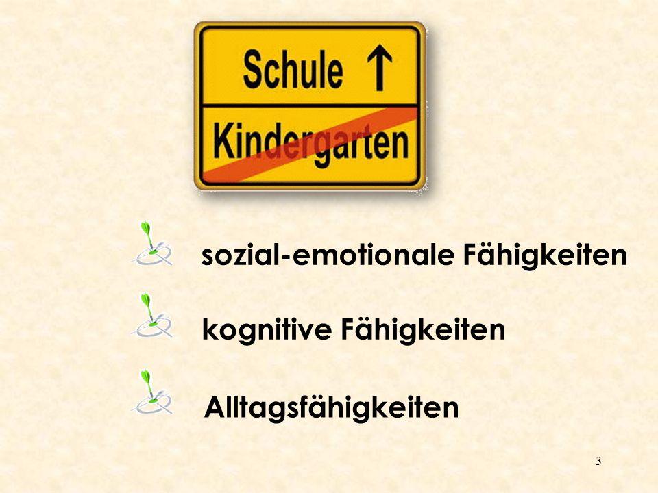 3 sozial-emotionale Fähigkeiten kognitive Fähigkeiten Alltagsfähigkeiten