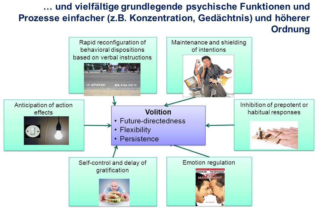 Anticipation of action effects … und vielfältige grundlegende psychische Funktionen und Prozesse einfacher (z.B. Konzentration, Gedächtnis) und höhere