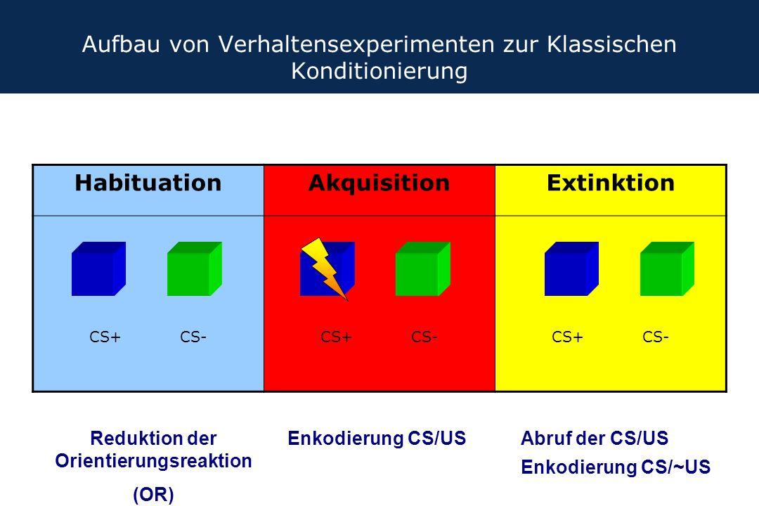 Aufbau von Verhaltensexperimenten zur Klassischen Konditionierung HabituationAkquisitionExtinktion CS+ CS- Reduktion der Orientierungsreaktion (OR) En