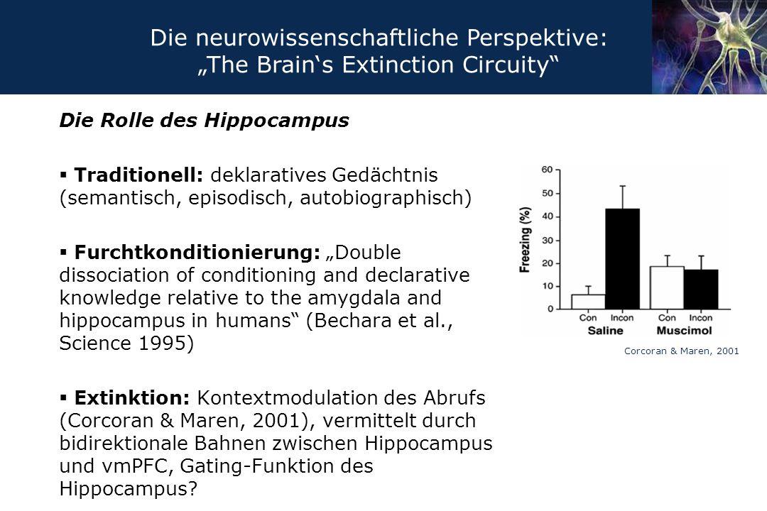 """Die Rolle des Hippocampus  Traditionell: deklaratives Gedächtnis (semantisch, episodisch, autobiographisch)  Furchtkonditionierung: """"Double dissocia"""
