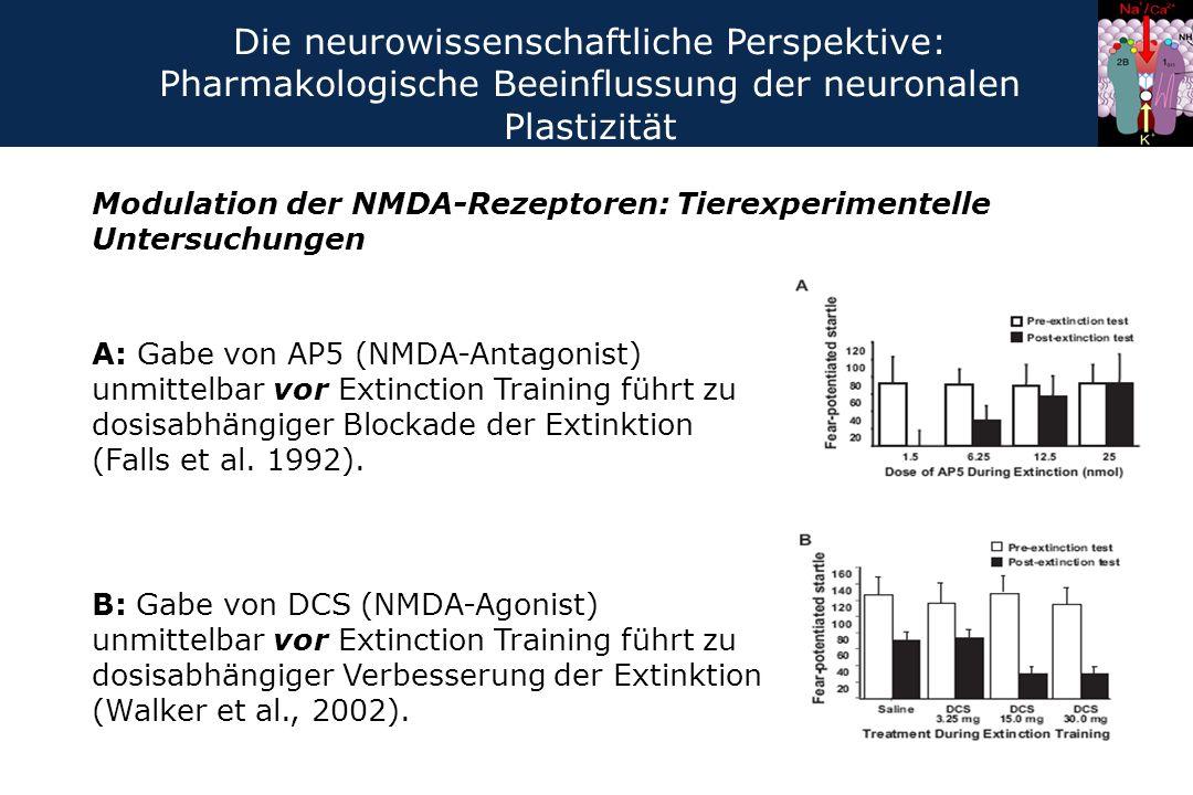 Modulation der NMDA-Rezeptoren: Tierexperimentelle Untersuchungen A: Gabe von AP5 (NMDA-Antagonist) unmittelbar vor Extinction Training führt zu dosis