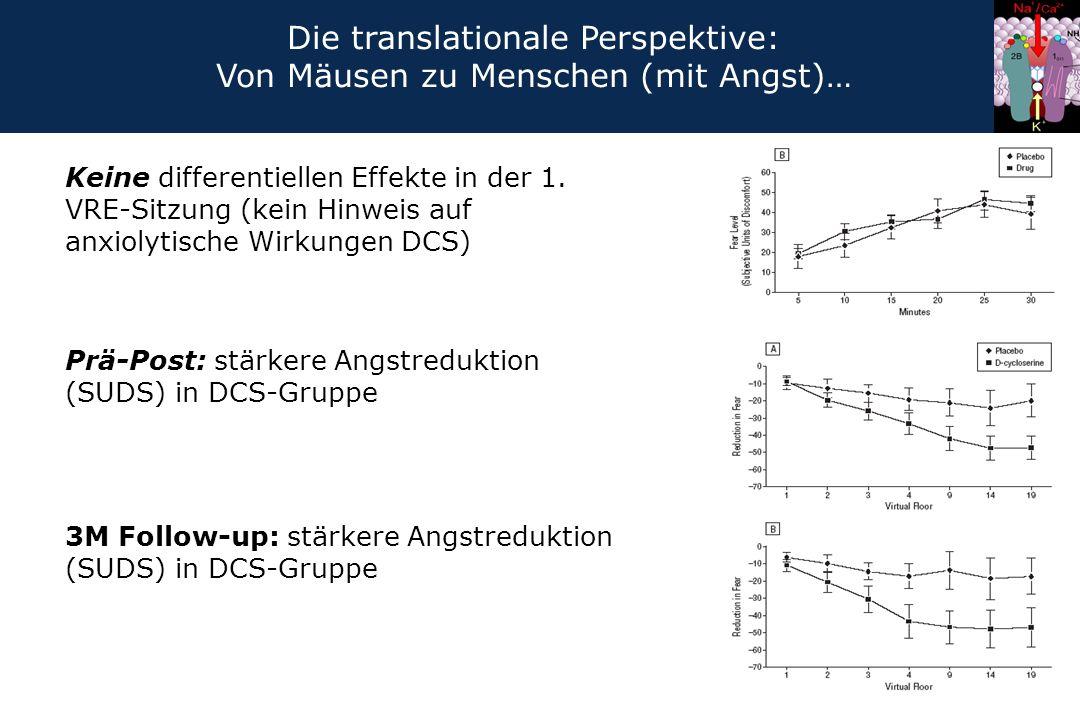 Keine differentiellen Effekte in der 1. VRE-Sitzung (kein Hinweis auf anxiolytische Wirkungen DCS) Prä-Post: stärkere Angstreduktion (SUDS) in DCS-Gru