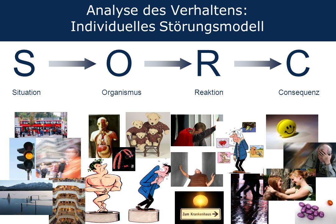 Analyse des Verhaltens: Individuelles Störungsmodell SCR Situation ReaktionConsequenz O Organismus