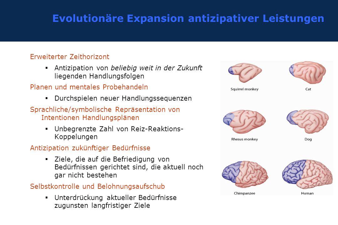 Evolutionäre Expansion antizipativer Leistungen Erweiterter Zeithorizont  Antizipation von beliebig weit in der Zukunft liegenden Handlungsfolgen Pla
