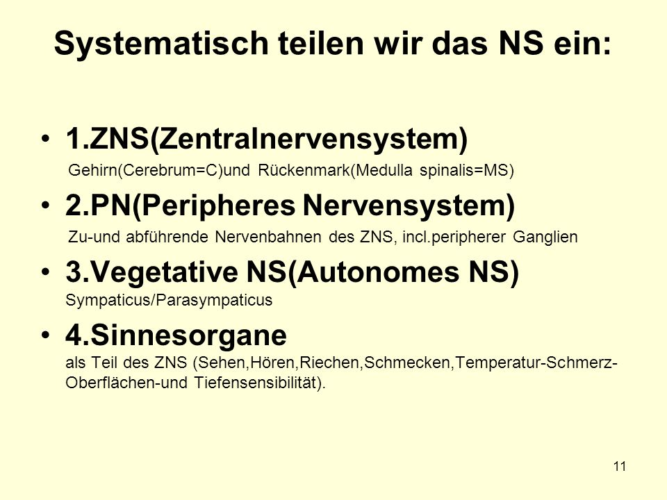11 Systematisch teilen wir das NS ein: 1.ZNS(Zentralnervensystem) Gehirn(Cerebrum=C)und Rückenmark(Medulla spinalis=MS) 2.PN(Peripheres Nervensystem) Zu-und abführende Nervenbahnen des ZNS, incl.peripherer Ganglien 3.Vegetative NS(Autonomes NS) Sympaticus/Parasympaticus 4.Sinnesorgane als Teil des ZNS (Sehen,Hören,Riechen,Schmecken,Temperatur-Schmerz- Oberflächen-und Tiefensensibilität).