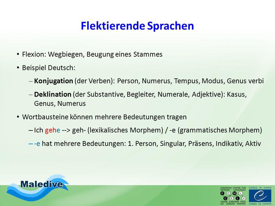 Flektierende Sprachen Flexion: Wegbiegen, Beugung eines Stammes Beispiel Deutsch:  Konjugation (der Verben): Person, Numerus, Tempus, Modus, Genus verbi  Deklination (der Substantive, Begleiter, Numerale, Adjektive): Kasus, Genus, Numerus Wortbausteine können mehrere Bedeutungen tragen – Ich gehe --> geh- (lexikalisches Morphem) / -e (grammatisches Morphem) – -e hat mehrere Bedeutungen: 1.