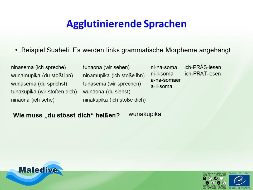 """Agglutinierende Sprachen """"Beispiel Suaheli: Es werden links grammatische Morpheme angehängt:. ni-na-soma ich-PRÄS-lesen ni-li-soma ich-PRÄT-lesen a-na"""