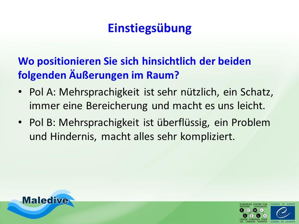 Schulhofdebatte: Podiumsdiskussion Aus: Süddeutsche Zeitung [http://www.sueddeutsche.de/karriere/deutschpflicht-auf- dem-schulhof-deutsch-macht-friedlich-1.1011661(20.12.2013)]