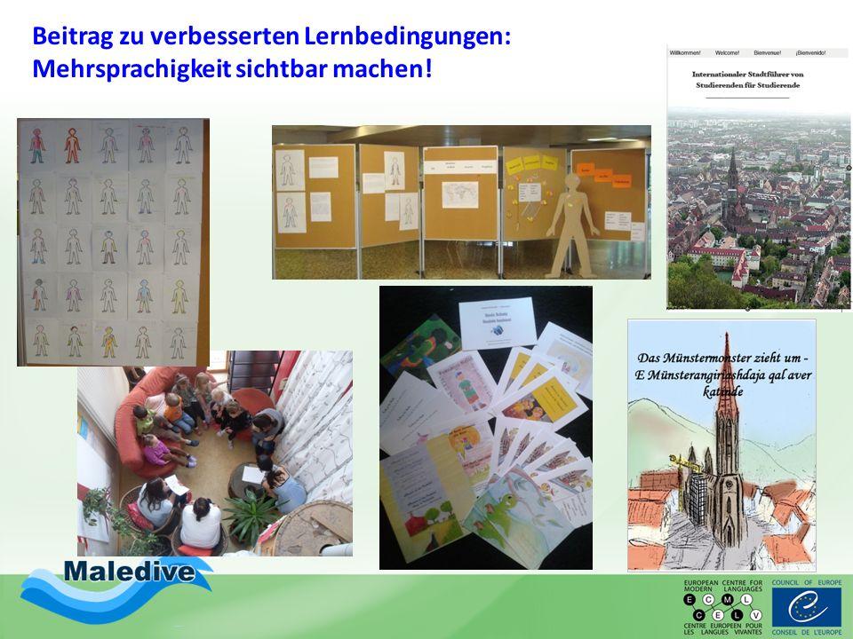 Beitrag zu verbesserten Lernbedingungen: Mehrsprachigkeit sichtbar machen!