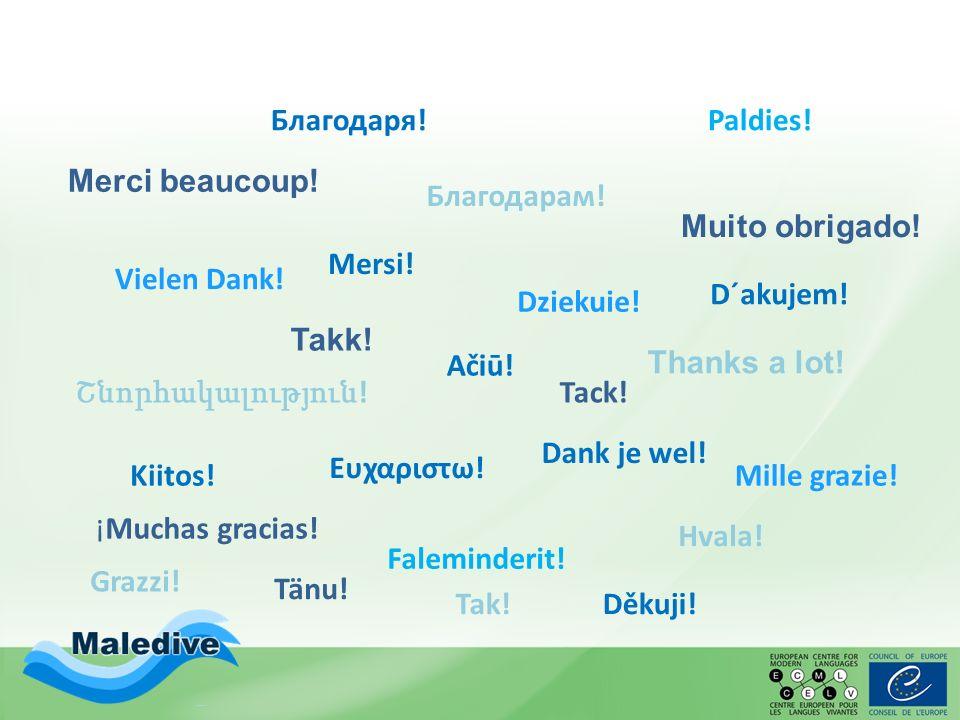 Vielen Dank! Thanks a lot! Kiitos! Merci beaucoup! Mille grazie! ¡Muchas gracias! Muito obrigado! Faleminderit! Շնորհակալություն ! Hvala! Благодаря! Ε