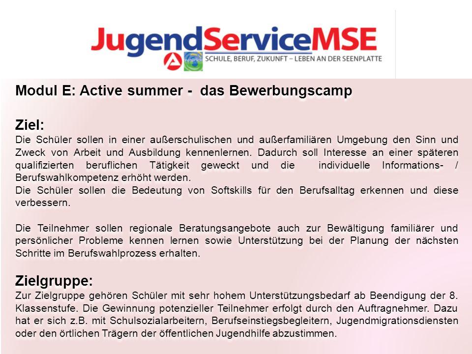 Modul E: Active summer - das Bewerbungscamp Ziel: Die Schüler sollen in einer außerschulischen und außerfamiliären Umgebung den Sinn und Zweck von Arbeit und Ausbildung kennenlernen.