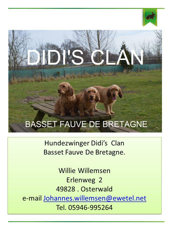 Hundezwinger Didi's Clan Basset Fauve De Bretagne. Willie Willemsen Erlenweg 2 49828. Osterwald e-mail Johannes.willemsen@ewetel.netJohannes.willemsen