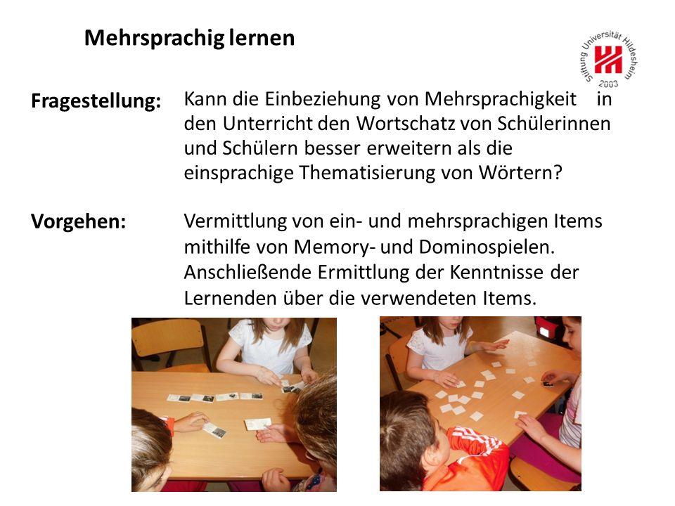 Fragestellung: Kann die Einbeziehung von Mehrsprachigkeit in den Unterricht den Wortschatz von Schülerinnen und Schülern besser erweitern als die einsprachige Thematisierung von Wörtern.