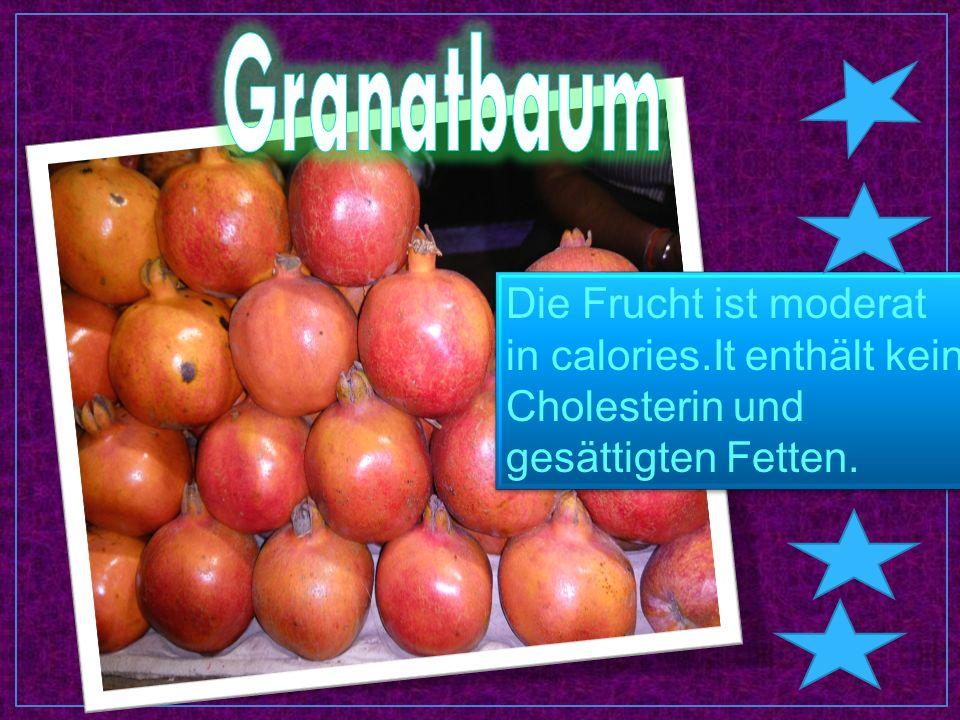 Die Frucht ist moderat in calories.It enthält kein Cholesterin und gesättigten Fetten.