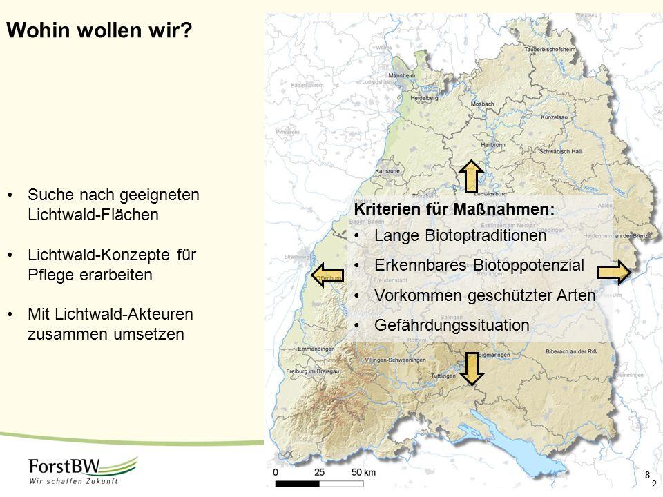 2 Wohin wollen wir? Suche nach geeigneten Lichtwald-Flächen Lichtwald-Konzepte für Pflege erarbeiten Mit Lichtwald-Akteuren zusammen umsetzen Kriterie