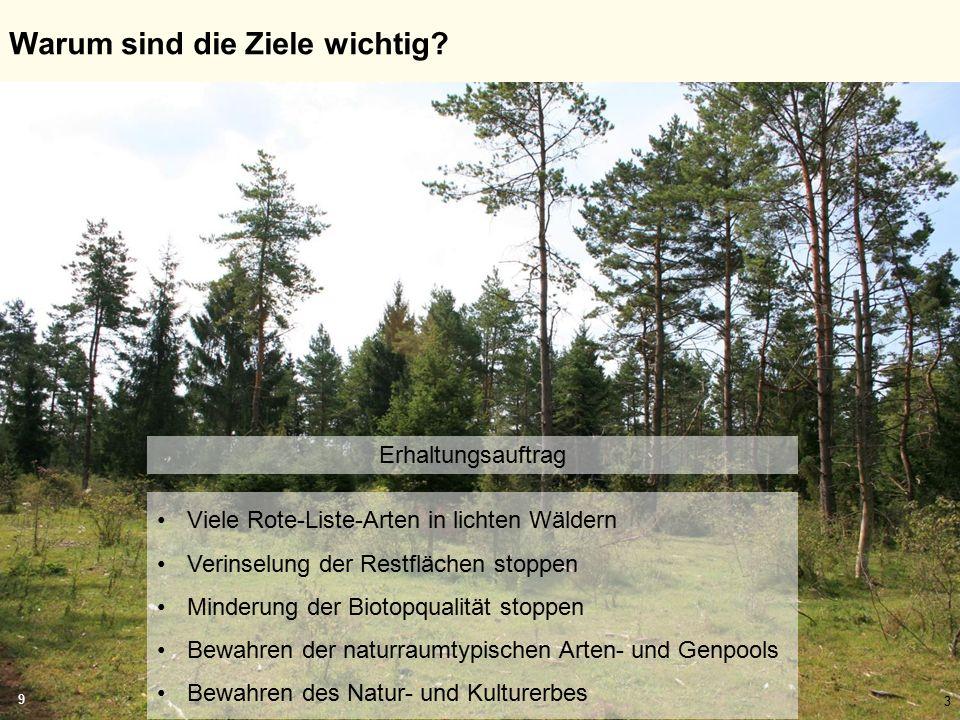 3 Warum sind die Ziele wichtig? Viele Rote-Liste-Arten in lichten Wäldern Verinselung der Restflächen stoppen Minderung der Biotopqualität stoppen Bew
