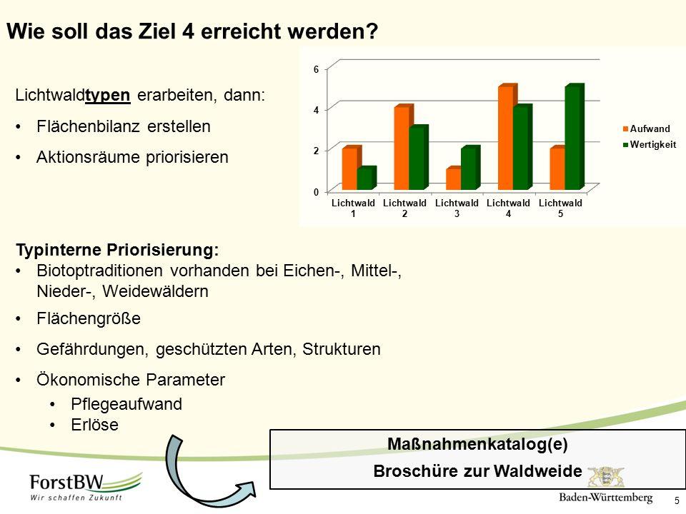 5 Wie soll das Ziel 4 erreicht werden? Lichtwaldtypen erarbeiten, dann: Flächenbilanz erstellen Aktionsräume priorisieren Typinterne Priorisierung: Bi