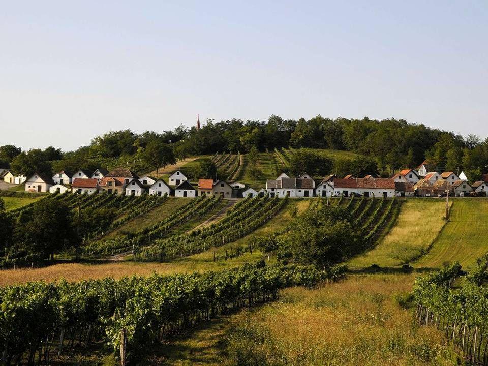 Wildendürnbach Wildendürnbach liegt im nördlichen Weinviertel an der tschechischen Grenze, ca.