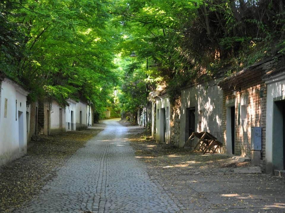 Poysdorf Poysdorf liegt im Hügelland des nördlichen Weinviertels an der Brünner Straße im Tal des Poybachs, der in die Zaya mündet.