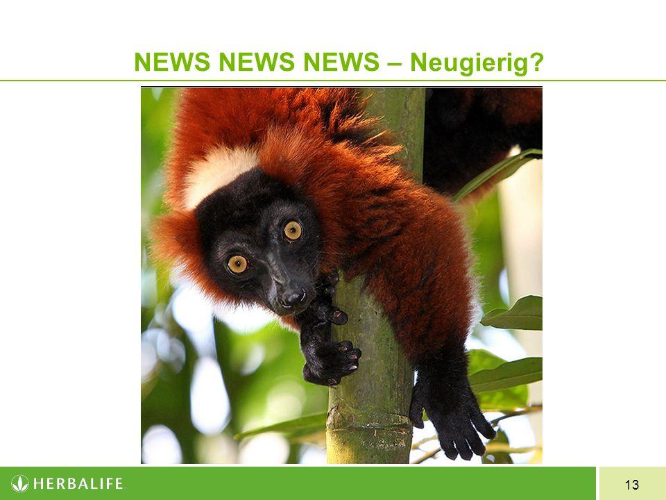 13 NEWS NEWS NEWS – Neugierig?