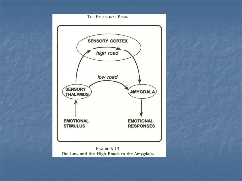 Mögliche Beurteilungsfehler:.) Implizite Persönlichkeitstheorie: - Bezug auf den sog.