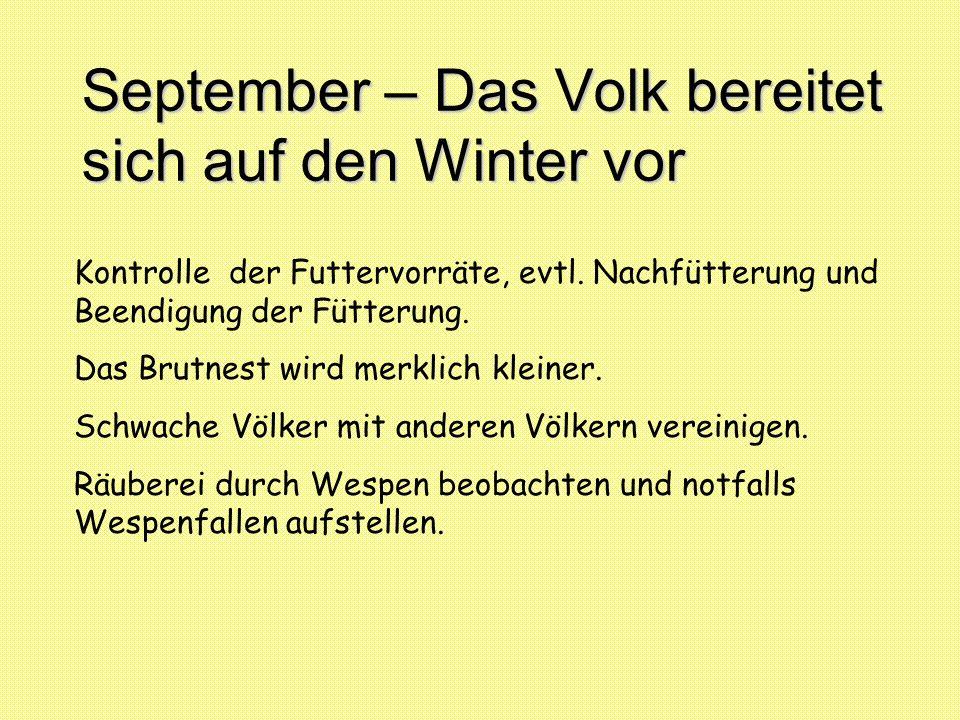 September – Das Volk bereitet sich auf den Winter vor Kontrolle der Futtervorräte, evtl. Nachfütterung und Beendigung der Fütterung. Das Brutnest wird