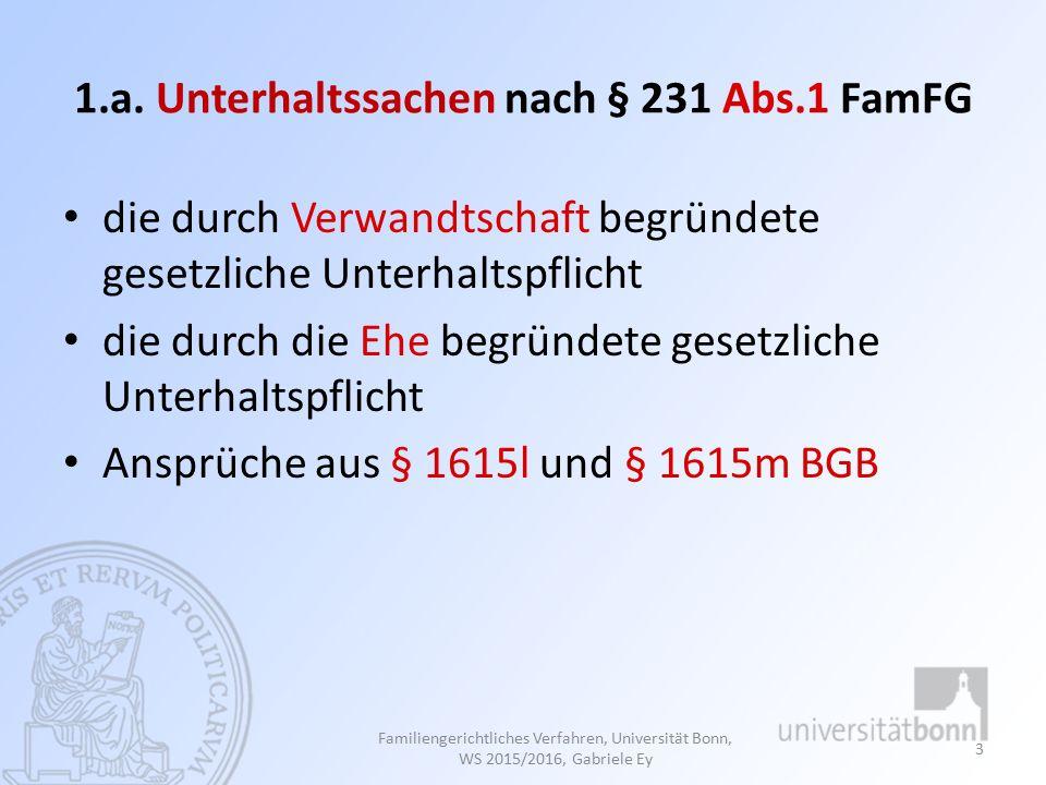 Familiengerichtliches Verfahren, Universität Bonn, WS 2015/2016, Gabriele Ey 24 Nr.