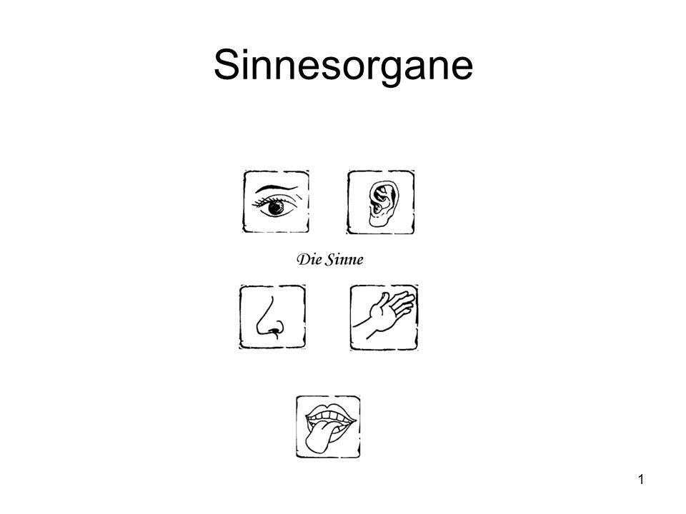 1 Sinnesorgane