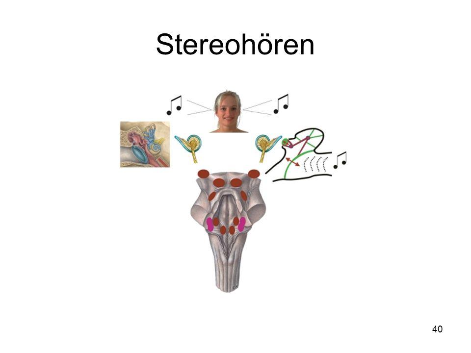 40 Stereohören