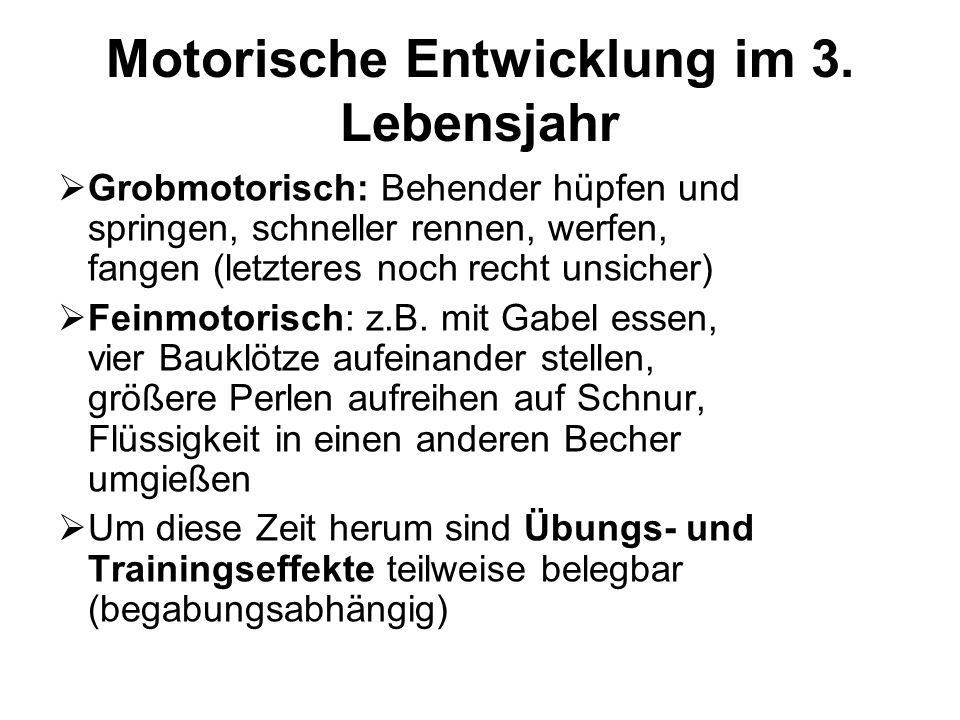 Motorische Entwicklung im 3. Lebensjahr  Grobmotorisch: Behender hüpfen und springen, schneller rennen, werfen, fangen (letzteres noch recht unsicher