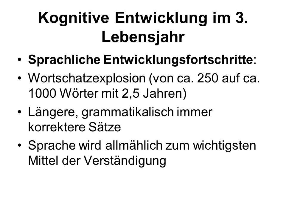 Kognitive Entwicklung im 3. Lebensjahr Sprachliche Entwicklungsfortschritte: Wortschatzexplosion (von ca. 250 auf ca. 1000 Wörter mit 2,5 Jahren) Läng