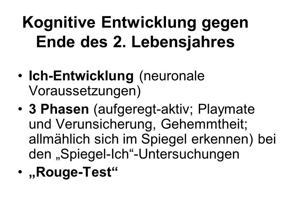 Kognitive Entwicklung gegen Ende des 2. Lebensjahres Ich-Entwicklung (neuronale Voraussetzungen) 3 Phasen (aufgeregt-aktiv; Playmate und Verunsicherun