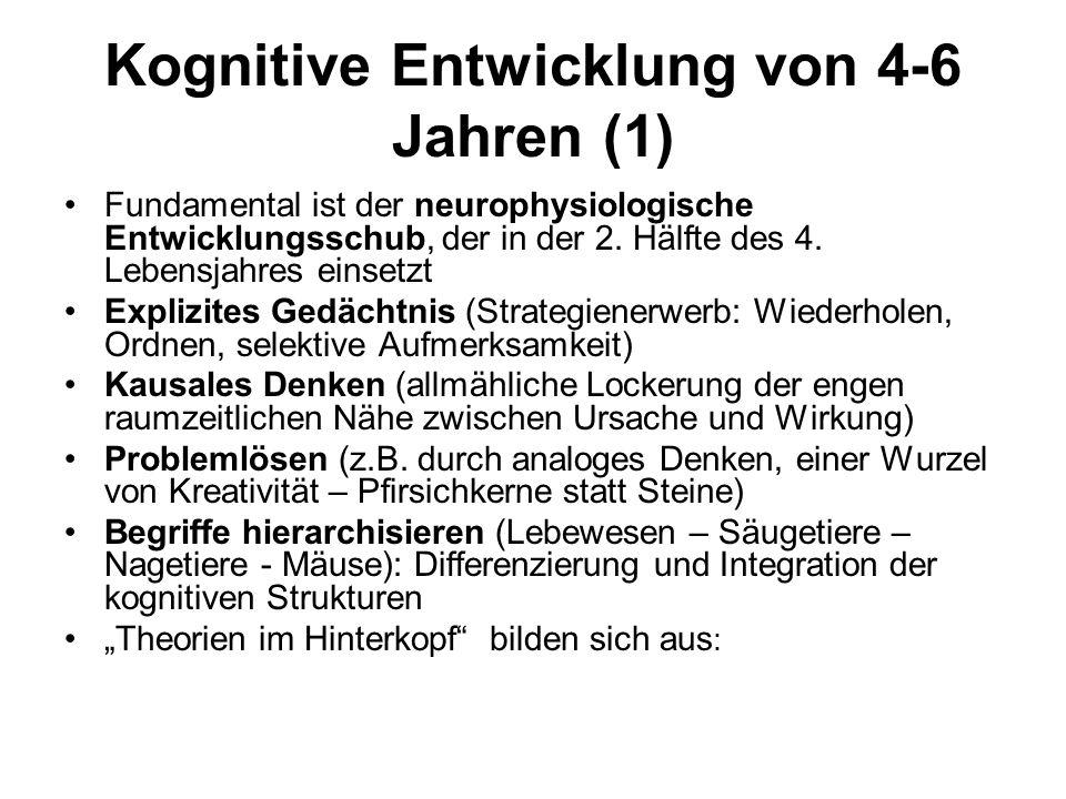 Kognitive Entwicklung von 4-6 Jahren (1) Fundamental ist der neurophysiologische Entwicklungsschub, der in der 2. Hälfte des 4. Lebensjahres einsetzt