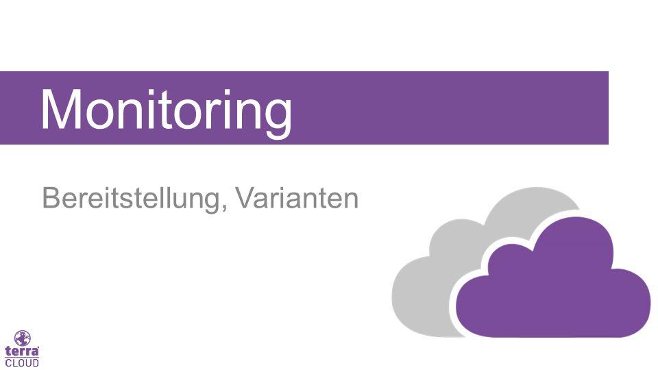 Monitoring Bereitstellung, Varianten