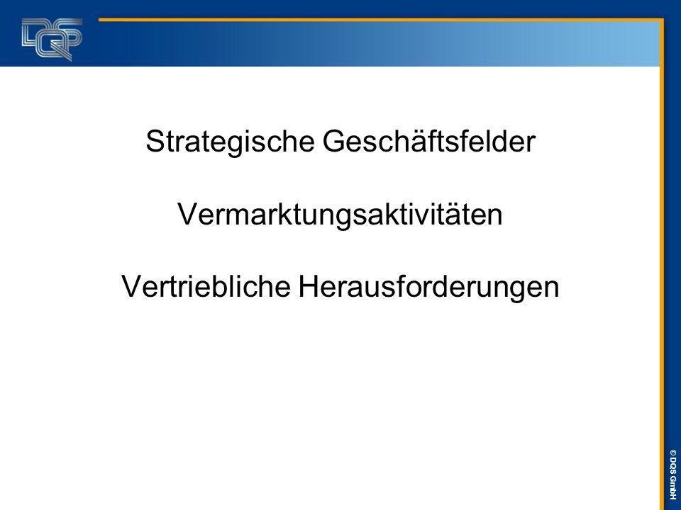 © DQS GmbH Strategische Geschäftsfelder Vermarktungsaktivitäten Vertriebliche Herausforderungen