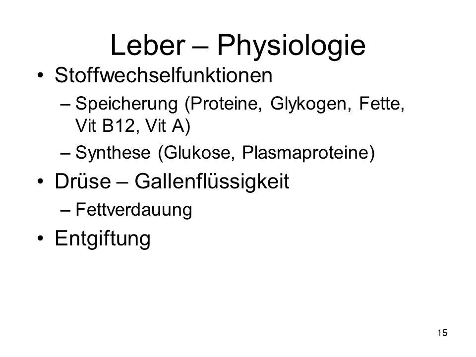 15 Leber – Physiologie Stoffwechselfunktionen –Speicherung (Proteine, Glykogen, Fette, Vit B12, Vit A) –Synthese (Glukose, Plasmaproteine) Drüse – Gal