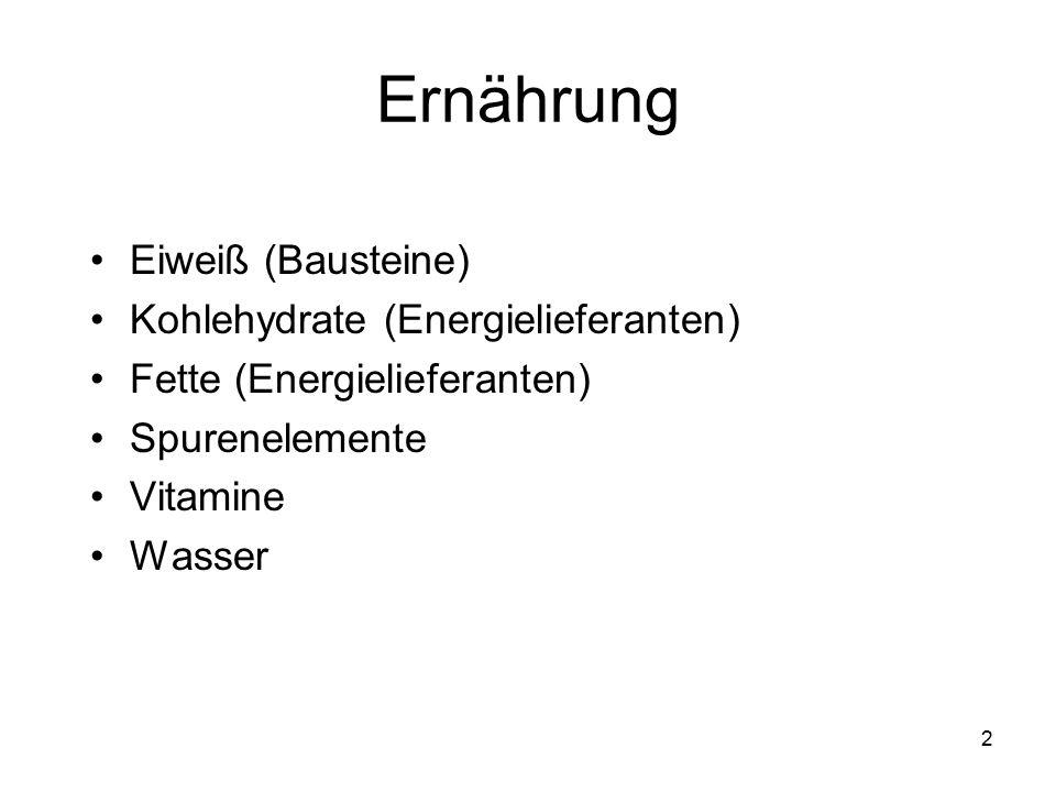 2 Ernährung Eiweiß (Bausteine) Kohlehydrate (Energielieferanten) Fette (Energielieferanten) Spurenelemente Vitamine Wasser