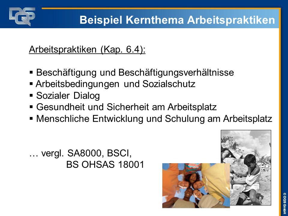 © DQS GmbH Beispiel Kernthema Arbeitspraktiken Arbeitspraktiken (Kap. 6.4):  Beschäftigung und Beschäftigungsverhältnisse  Arbeitsbedingungen und So
