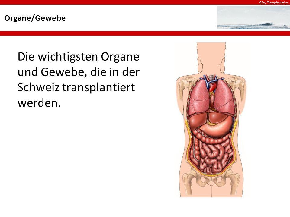 05a / Transplantation Organe/Gewebe Die wichtigsten Organe und Gewebe, die in der Schweiz transplantiert werden.