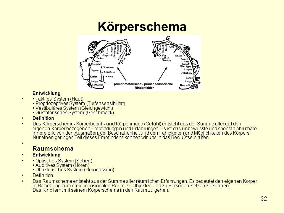 32 Körperschema Entwicklung Taktiles System (Haut) Propriozeptives System (Tiefensensibilität) Vestibuläres System (Gleichgewicht) Gustatorisches Syst