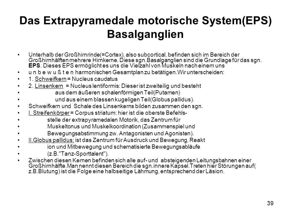 39 Das Extrapyramedale motorische System(EPS) Basalganglien Unterhalb der Großhirnrinde(=Cortex), also subcortical, befinden sich im Bereich der Großh