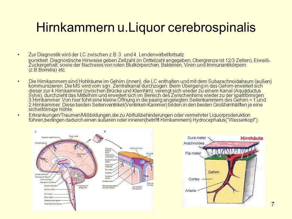 7 Hirnkammern u.Liquor cerebrospinalis Zur Diagnostik wird der LC zwischen z.B. 3. und 4. Lendenwirbelfortsatz punktiert. Diagnostische Hinweise geben