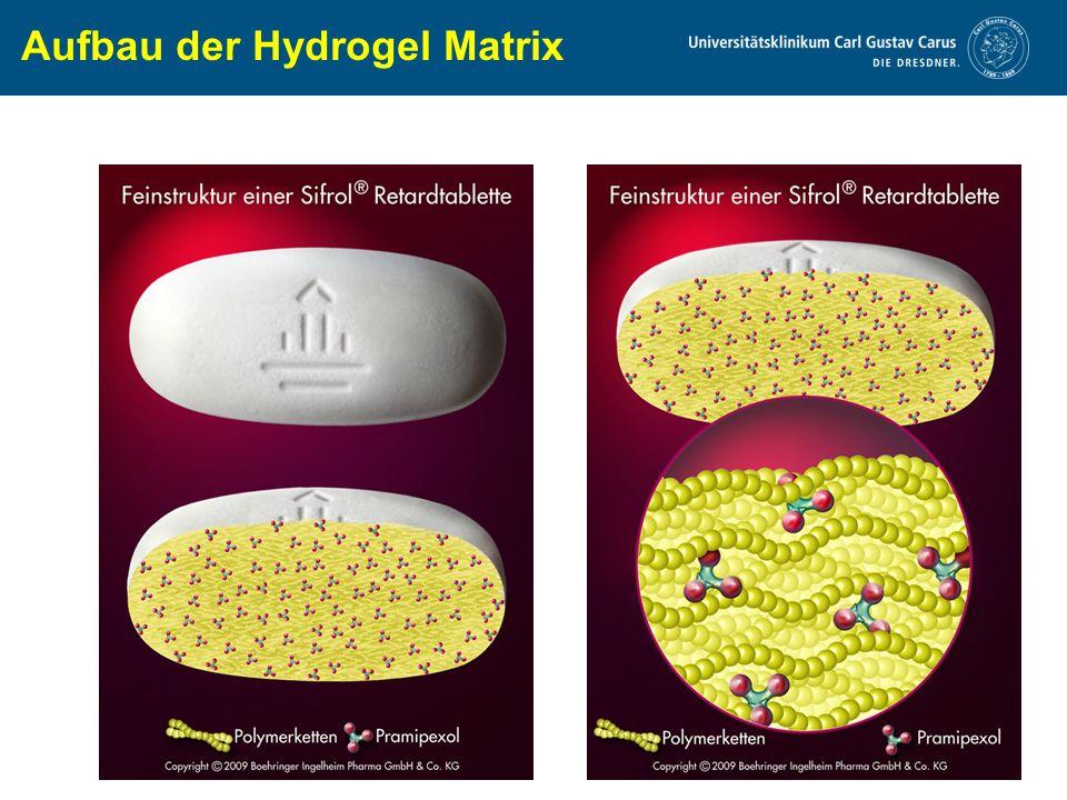 www.uniklinikum-dresden.de Aufbau der Hydrogel Matrix
