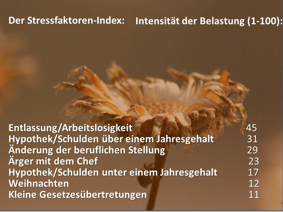 Der Stressfaktoren-Index: Intensität der Belastung (1-100): Kleine Gesetzesübertretungen Weihnachten Hypothek/Schulden unter einem Jahresgehalt Ärger