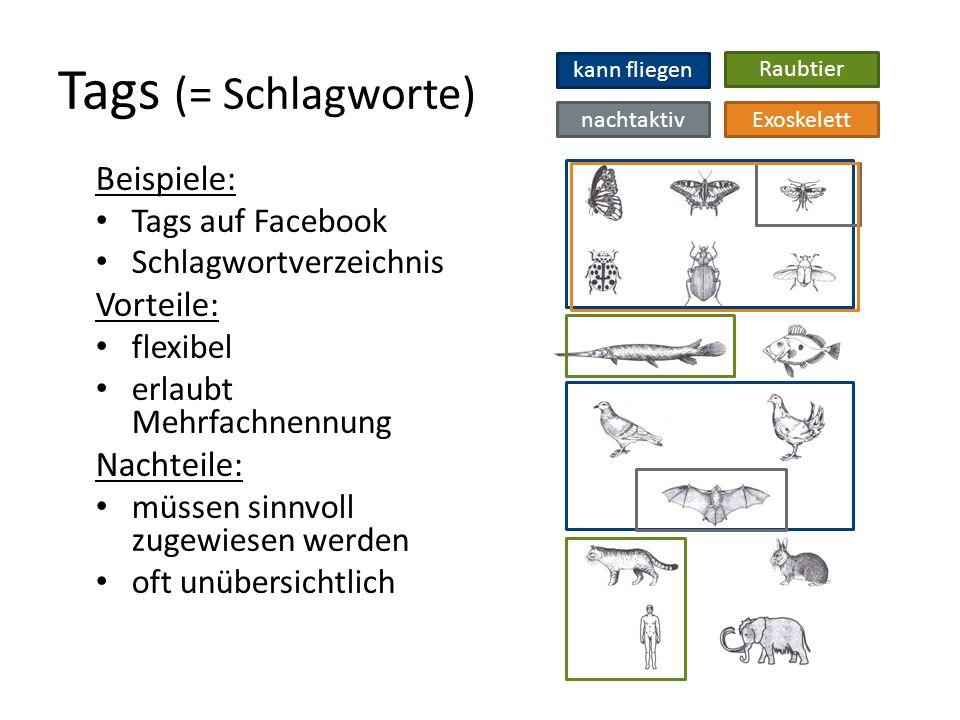 Tags (= Schlagworte) Beispiele: Tags auf Facebook Schlagwortverzeichnis Vorteile: flexibel erlaubt Mehrfachnennung Nachteile: müssen sinnvoll zugewiesen werden oft unübersichtlich kann fliegen Raubtier Exoskelettnachtaktiv